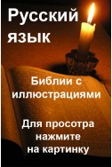 Библии с иллюстрациями